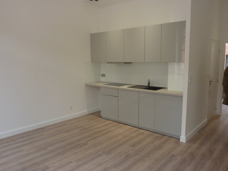 Location Toulouse Appartement  41 m2